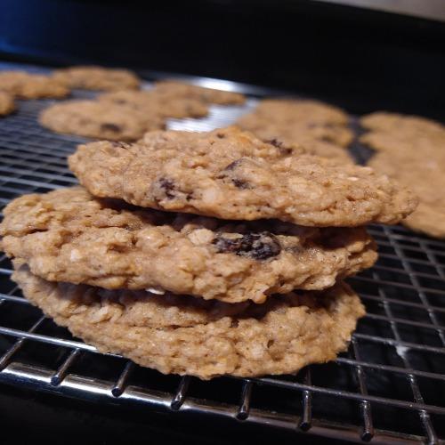 gluten free oatmeal raisin